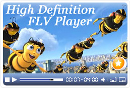 Flash Video FLV Player for Dreamweaver 4 full